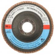 Круг лепестковый торцевой 'БАЗ' для шлифования, тип КЛТ 1, KK19XW, зерно-электрокорунд нормальный, P60, 115 х 22 мм